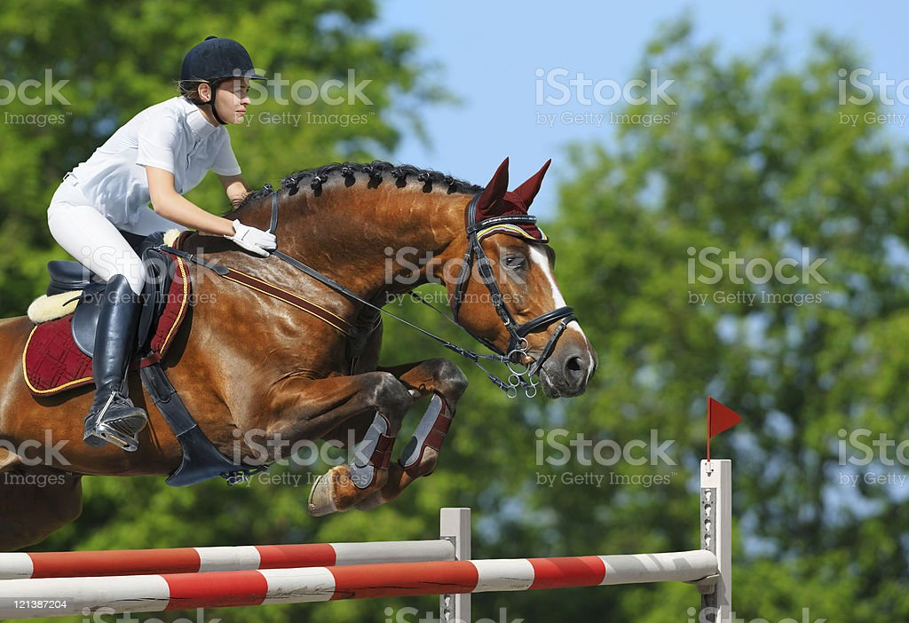 Female equestrian and brown bay mare jumping stock photo