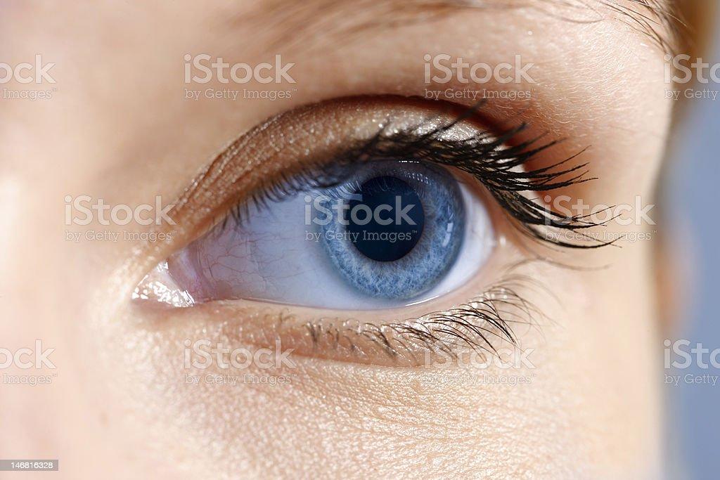 female eye stock photo