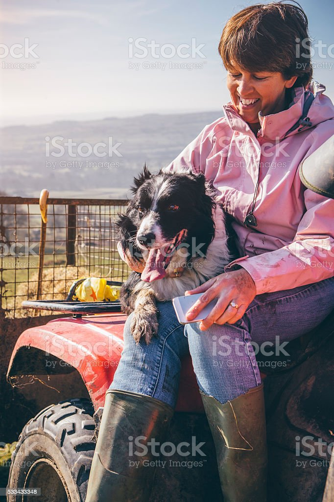 Female Farmer and Her Sheepdog stock photo