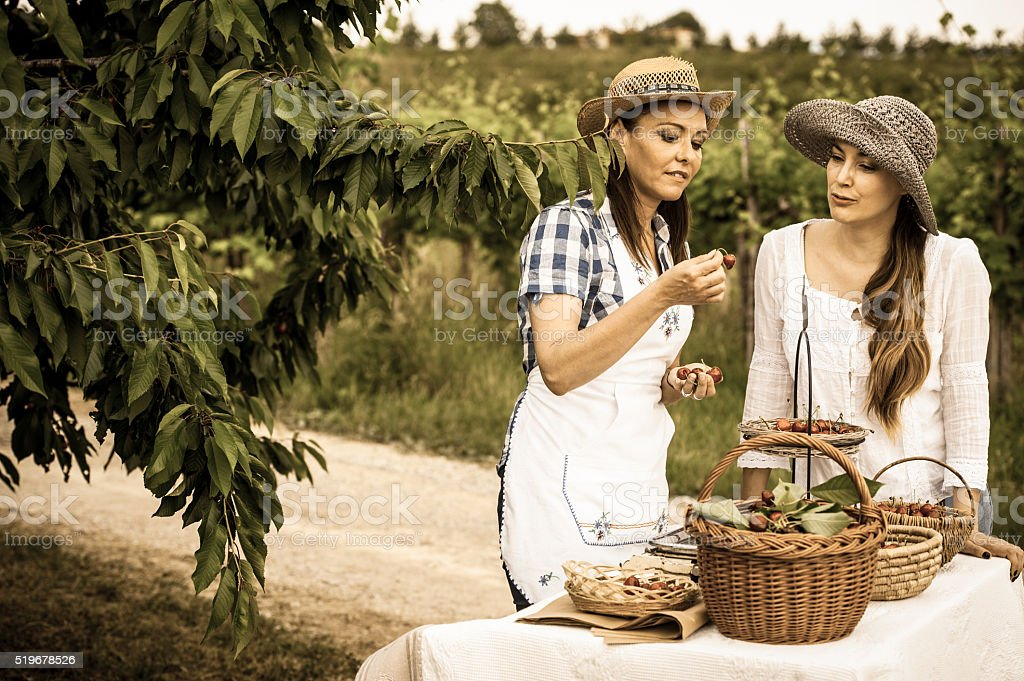 Female Farmer Selling Organic Cherries stock photo