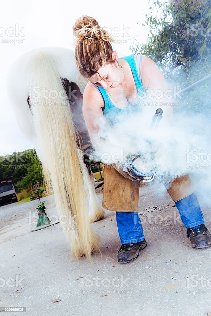 Female farrier fitting a hot shoe to a horses hoof stock photo