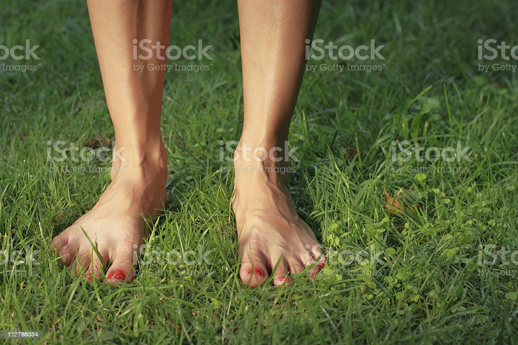 Female feet royalty-free stock photo