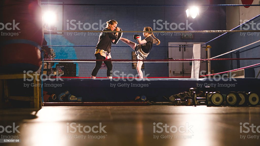 Female Fighters stock photo