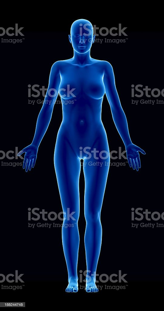 Female figure in anatomical position anteriror view royalty-free stock photo
