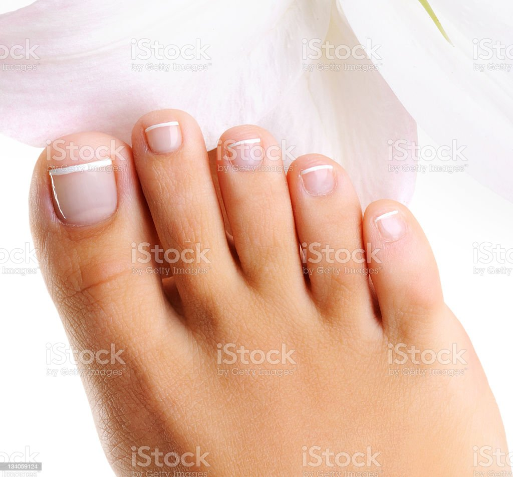 Female foot stock photo