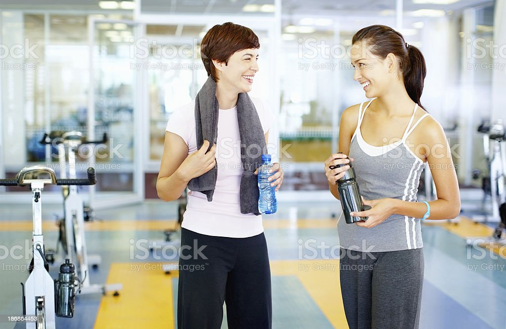 Female friends at the gym royalty-free stock photo