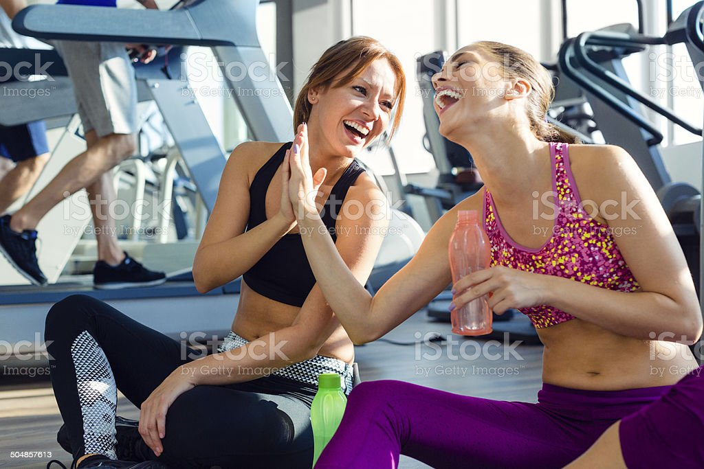 Female friends in the gym. stock photo