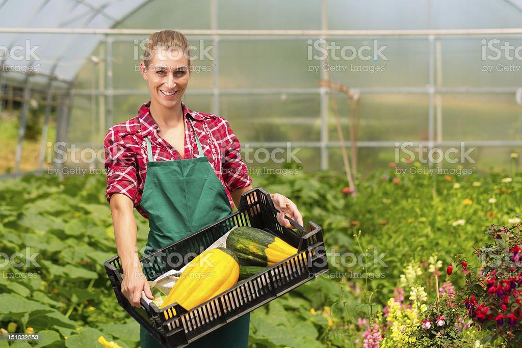 Female gardener in market garden or nursery royalty-free stock photo