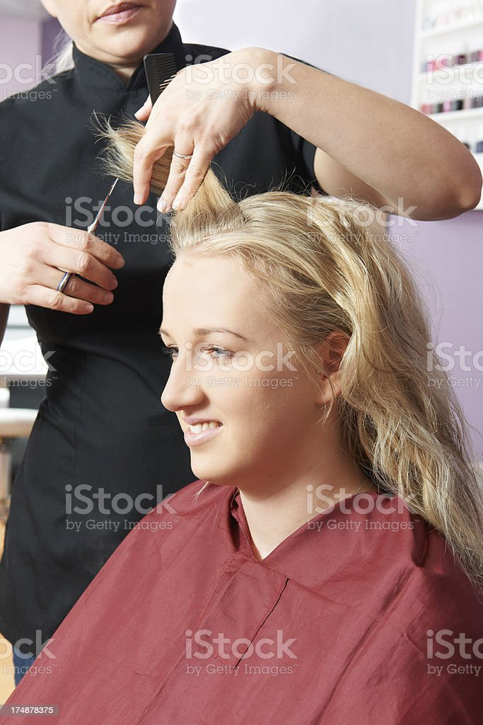 Female Hairdresser Working In Salon royalty-free stock photo