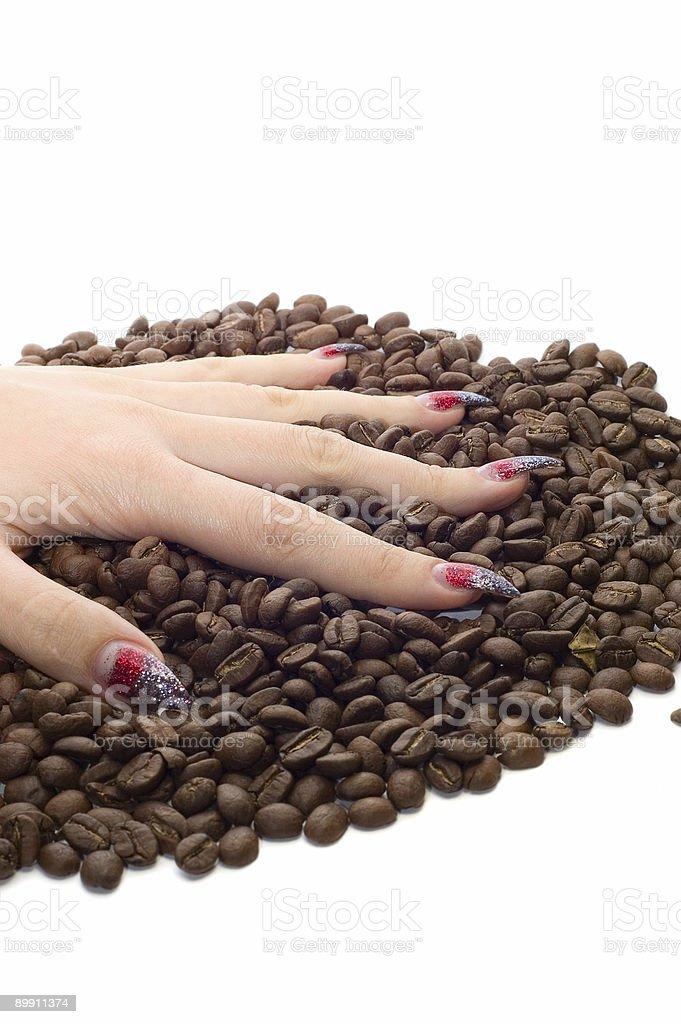 Femme main et de grains de café photo libre de droits