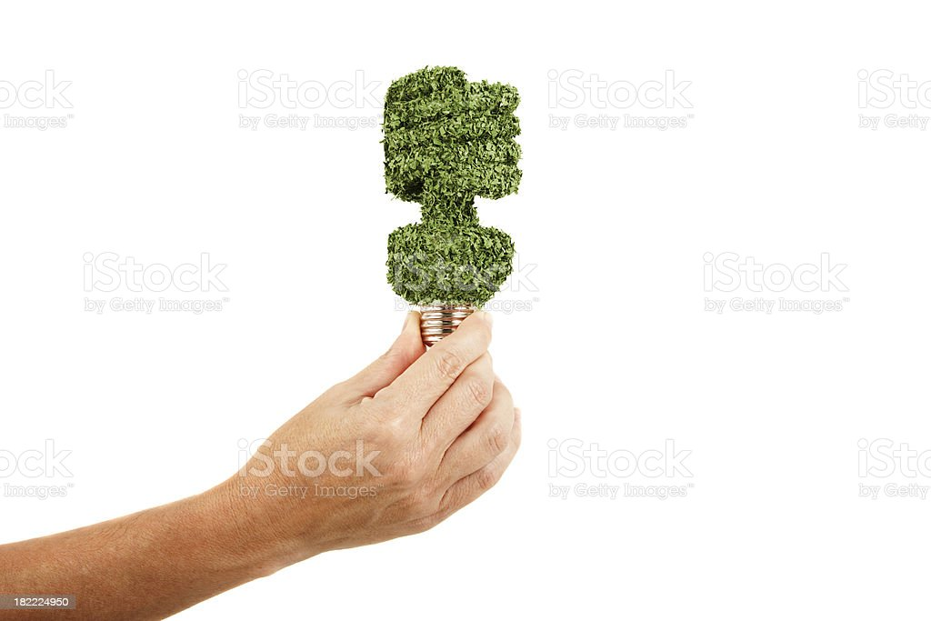 Female hand holding florescent light bulb LEED certified concept stock photo