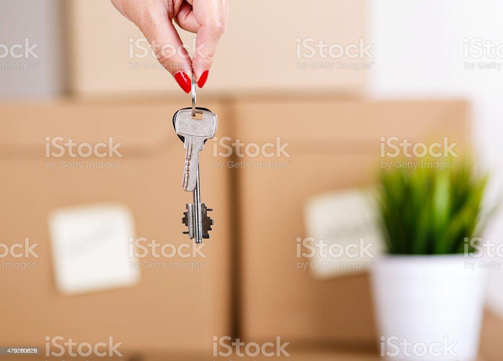 Female hand holding keys stock photo