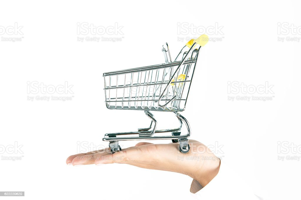 Female Hand is Holding Shopping Cart stock photo