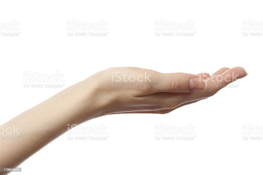 Female hand on a white background stock photo