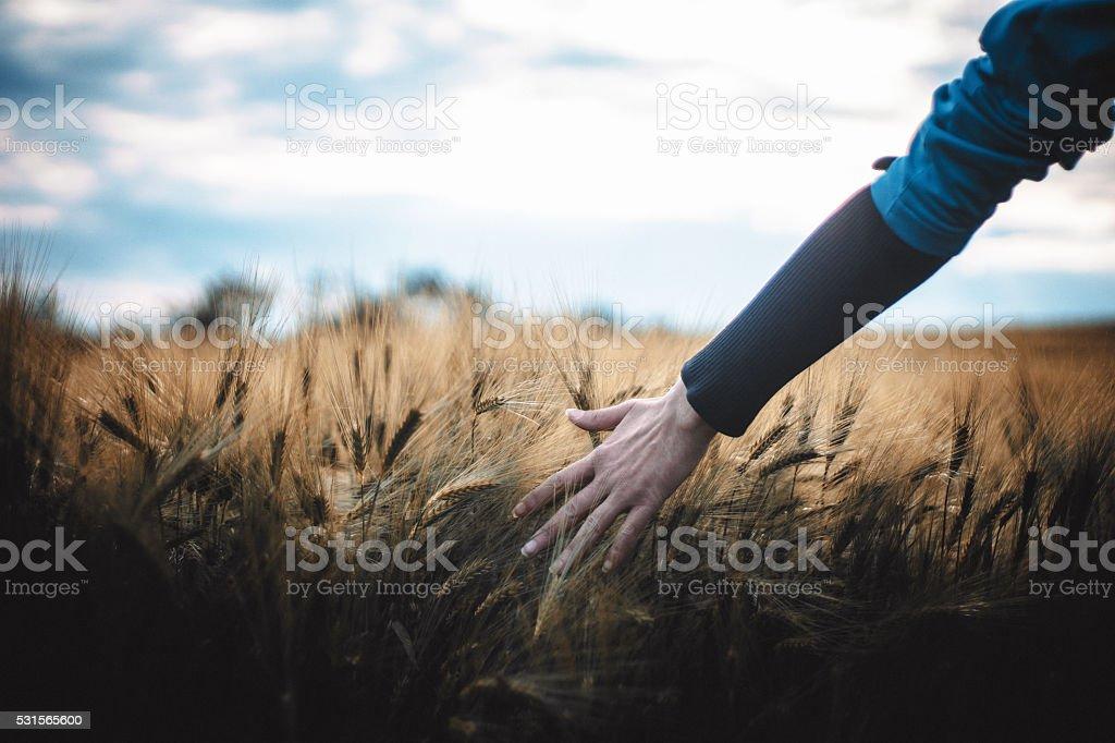 female hand stock photo
