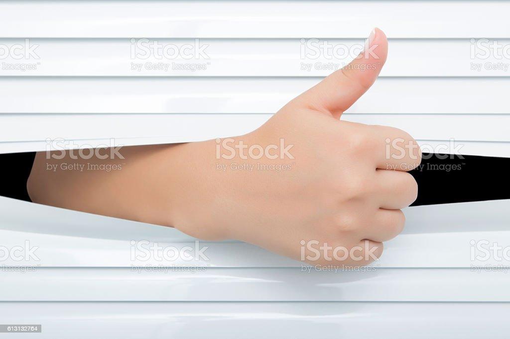 Female hand reaching through white jalousie stock photo