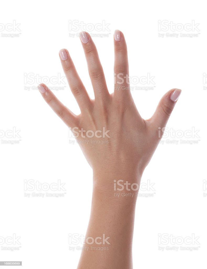 Female hand with fresh painted nails on white stock photo