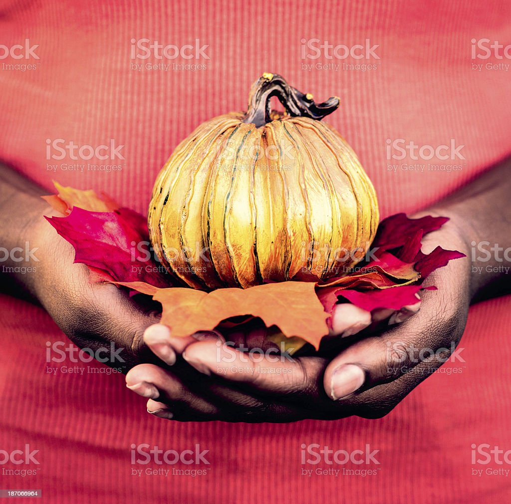 Female Hands Holding Leaves and Pumpkin royalty-free stock photo
