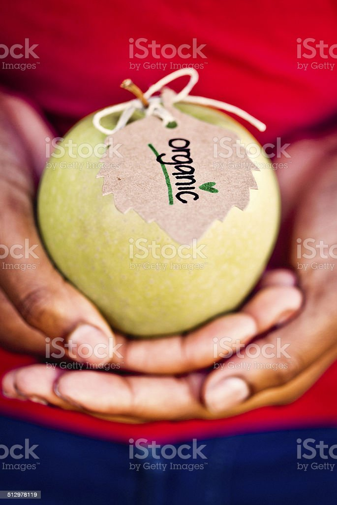 Female Hands Holding Organic Apple stock photo