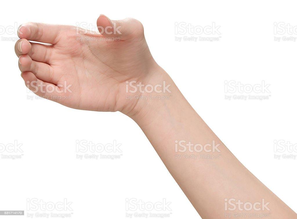 Female hands holding stock photo