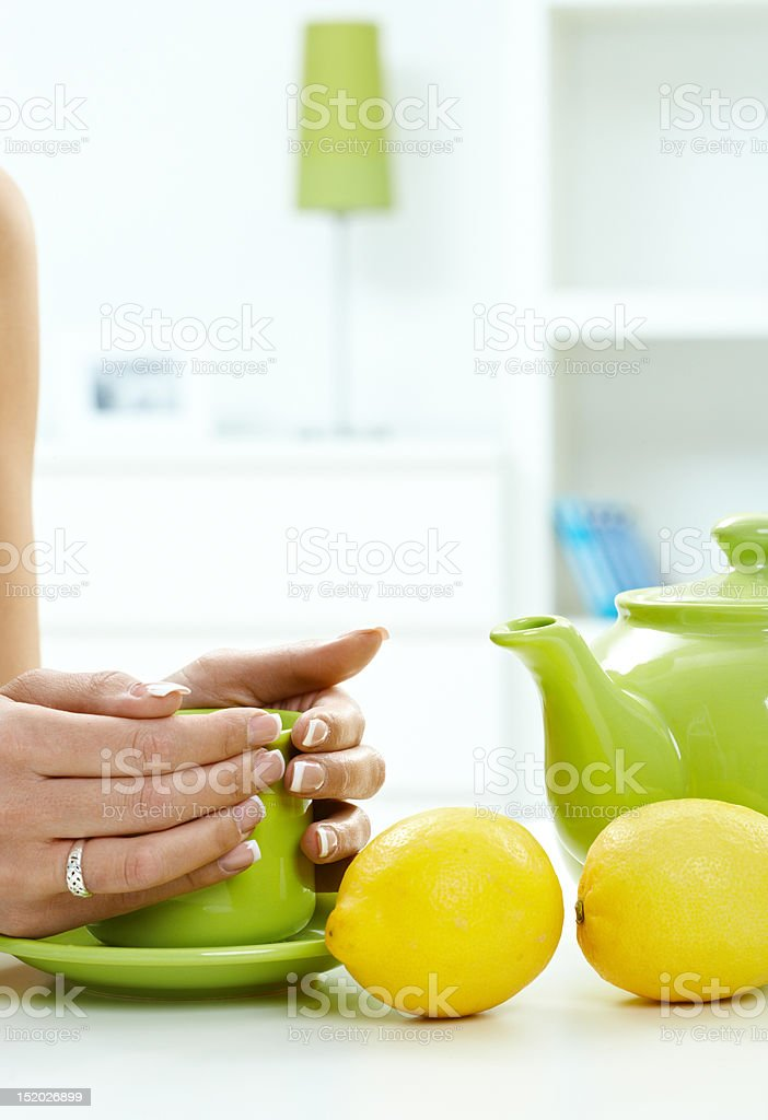 Female hands holding tea cup stock photo
