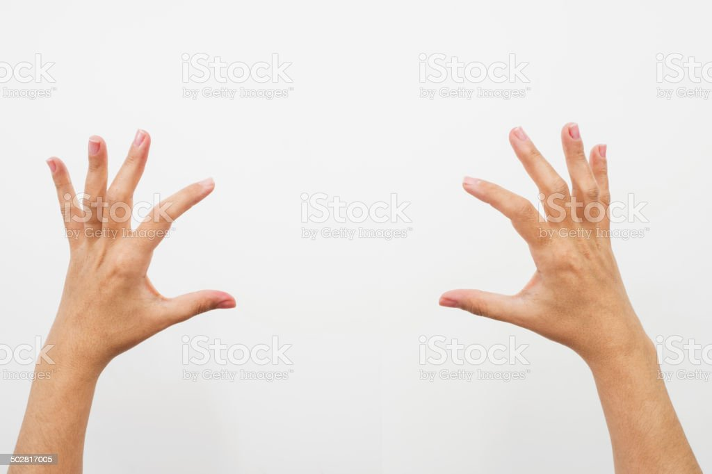 female hands holding up something royalty-free stock photo