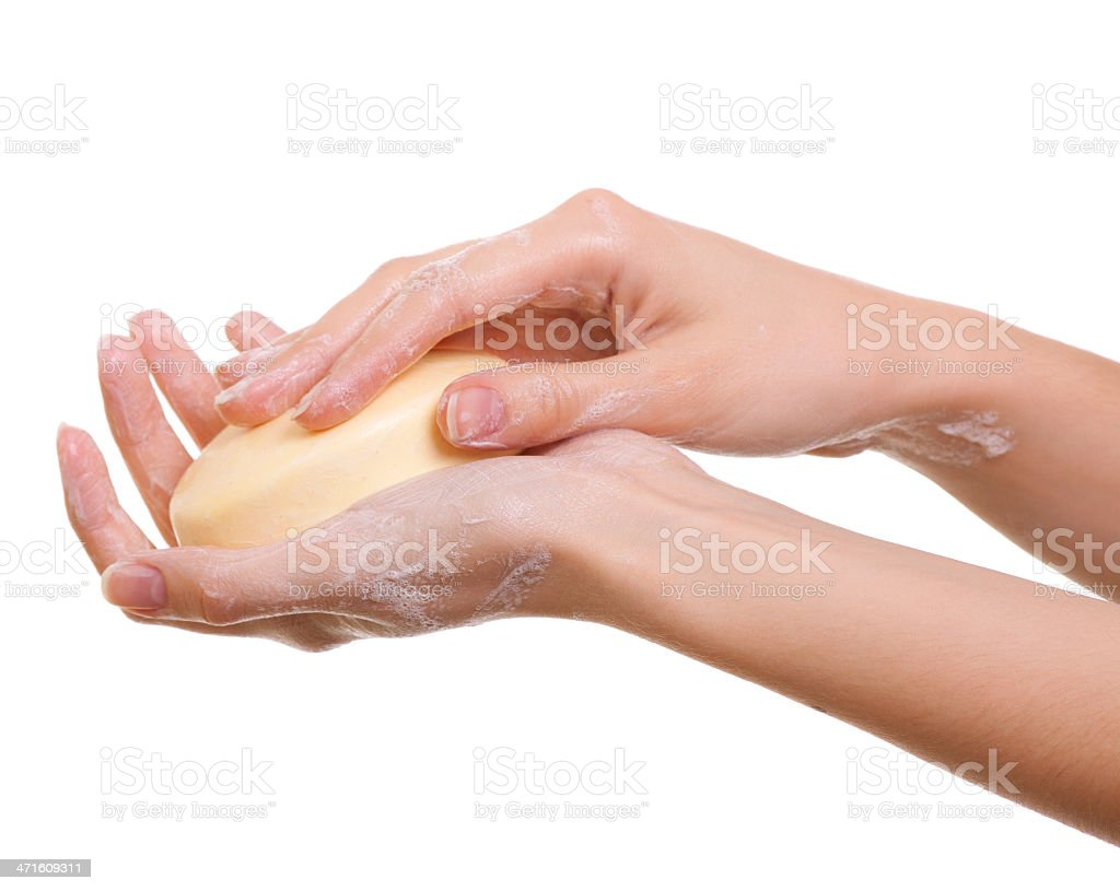 Female hands in soapsuds isolated on white royalty-free stock photo