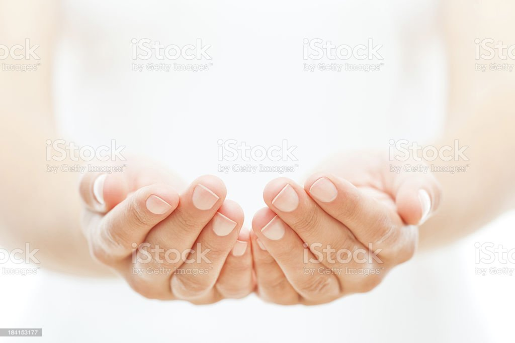 Female Hands on White stock photo