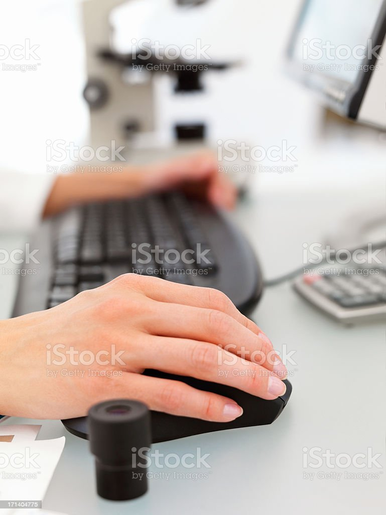 Female hands typing on a computer keyboard royalty-free stock photo