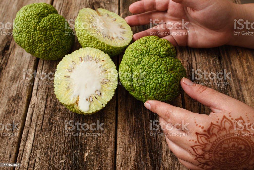 Female hands with mehendi taking osage orange stock photo