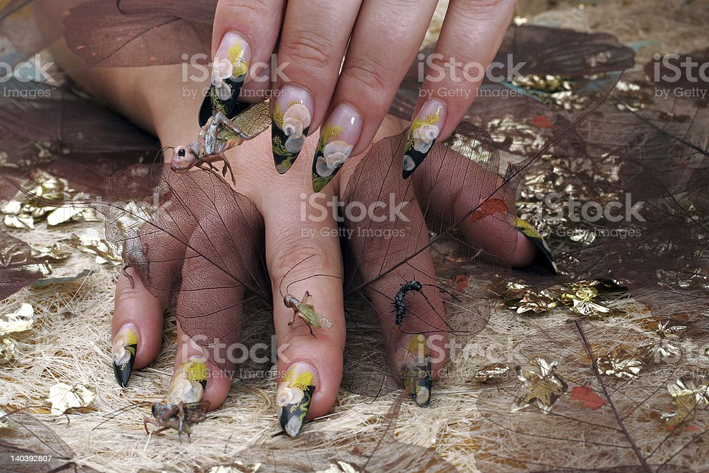 female hands with toy insects royalty-free stock photo