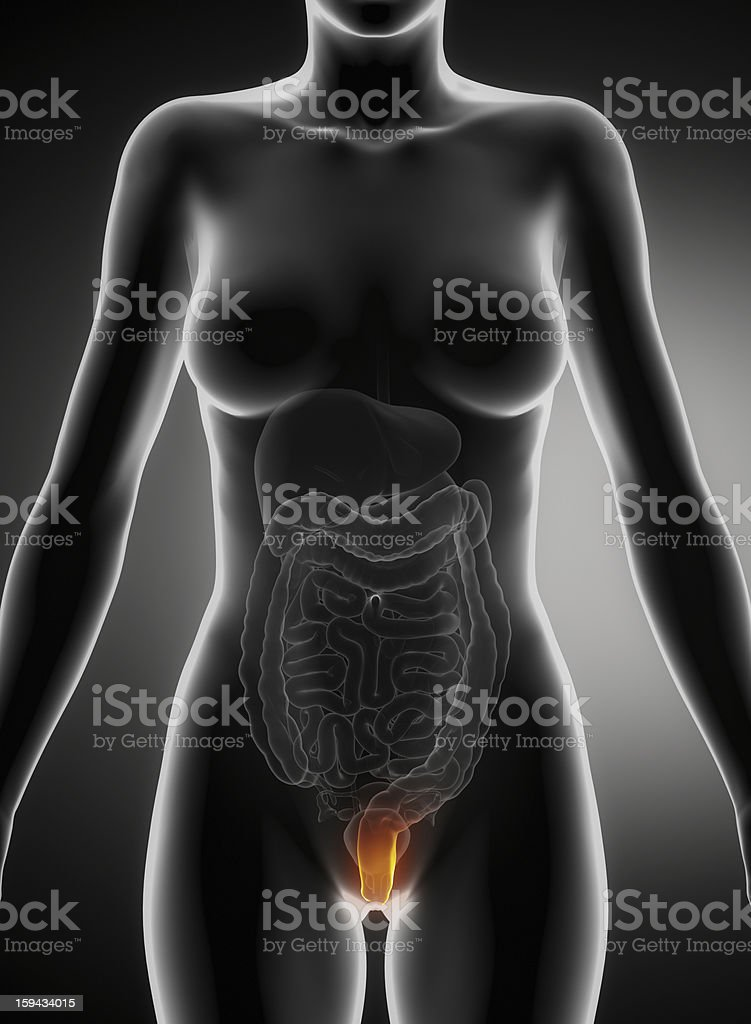 Female hemorrhoid concept royalty-free stock photo