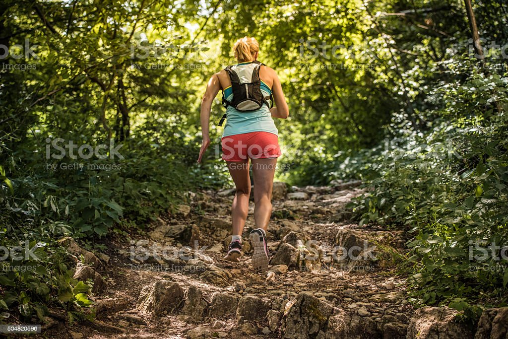 Female hiker in forest stock photo