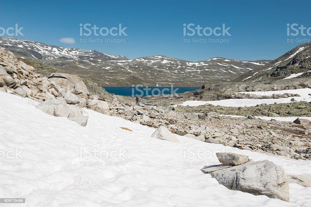 Female hiker in rough terrain in Jotunheimen in summer stock photo