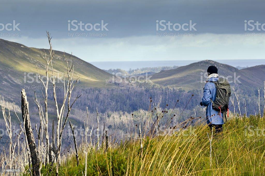 Female Hiker in rugged terrain. Tarkine wilderness, Tasmania, Australia stock photo