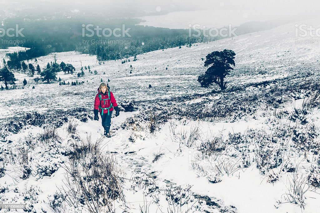 Female hiker in winter stock photo