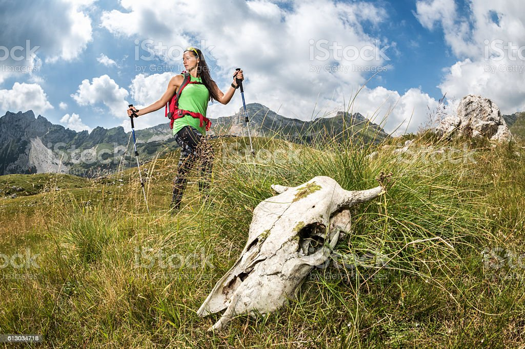 Female hiker on mountain trail stock photo