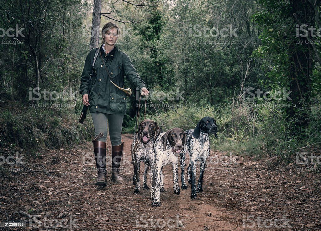 Female Hunter with German shorthaired pointers stock photo