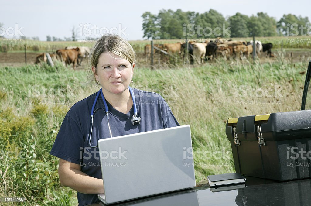 Female large animal veterinarian royalty-free stock photo
