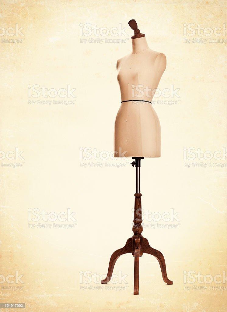 female mannequin torso stock photo
