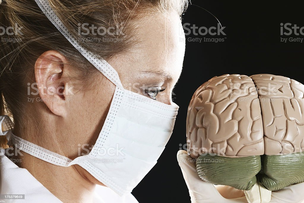 Female medical professional in surgical mask examines brain model stock photo