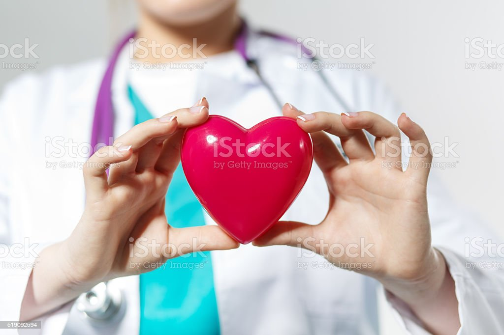 Female medicine doctor hands holding toy heart stock photo