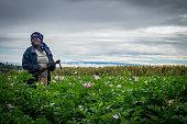 Female Potatoe Farmer in Kenya