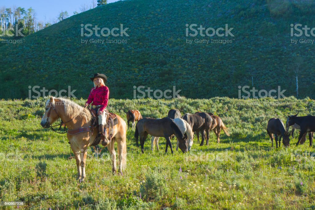 Female Ranch Hand Riding Her Horse stock photo