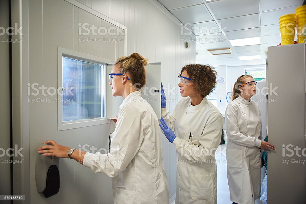 female science lecturer with students stock photo