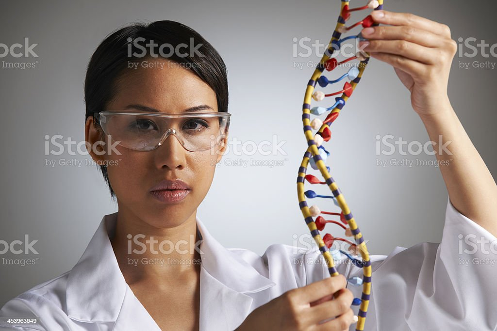 Female Scientist Studying Molecular Model In Shape Of Helix royalty-free stock photo