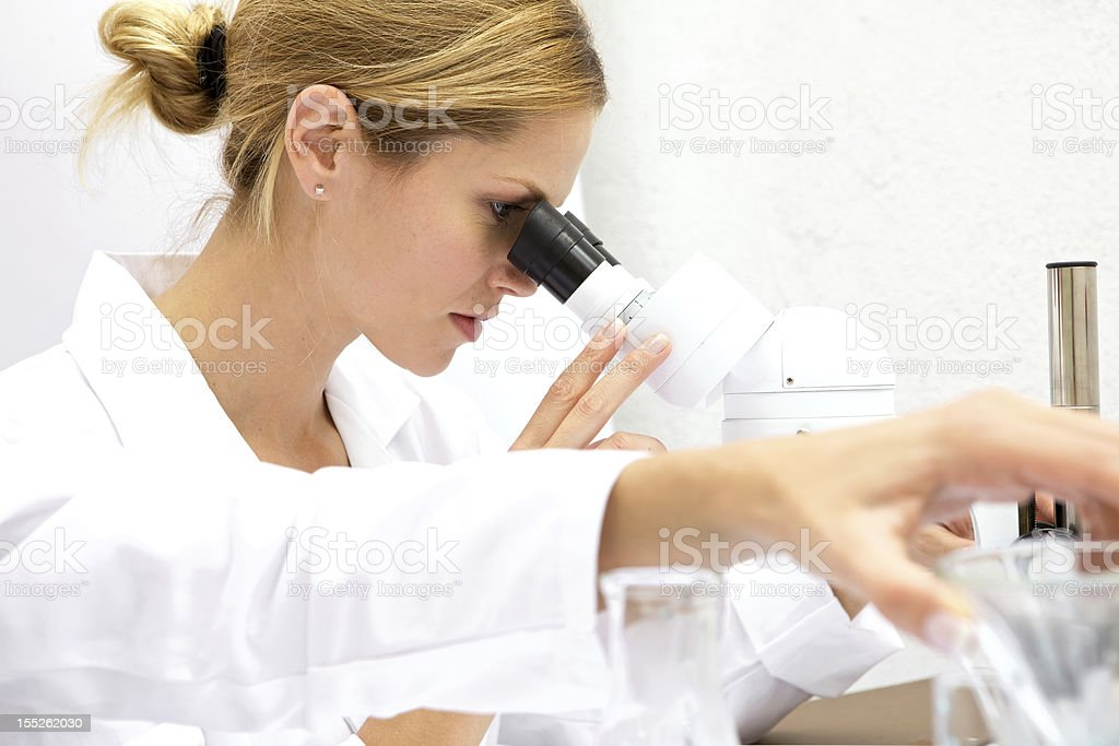 Female Scientist Working in a Lab stock photo