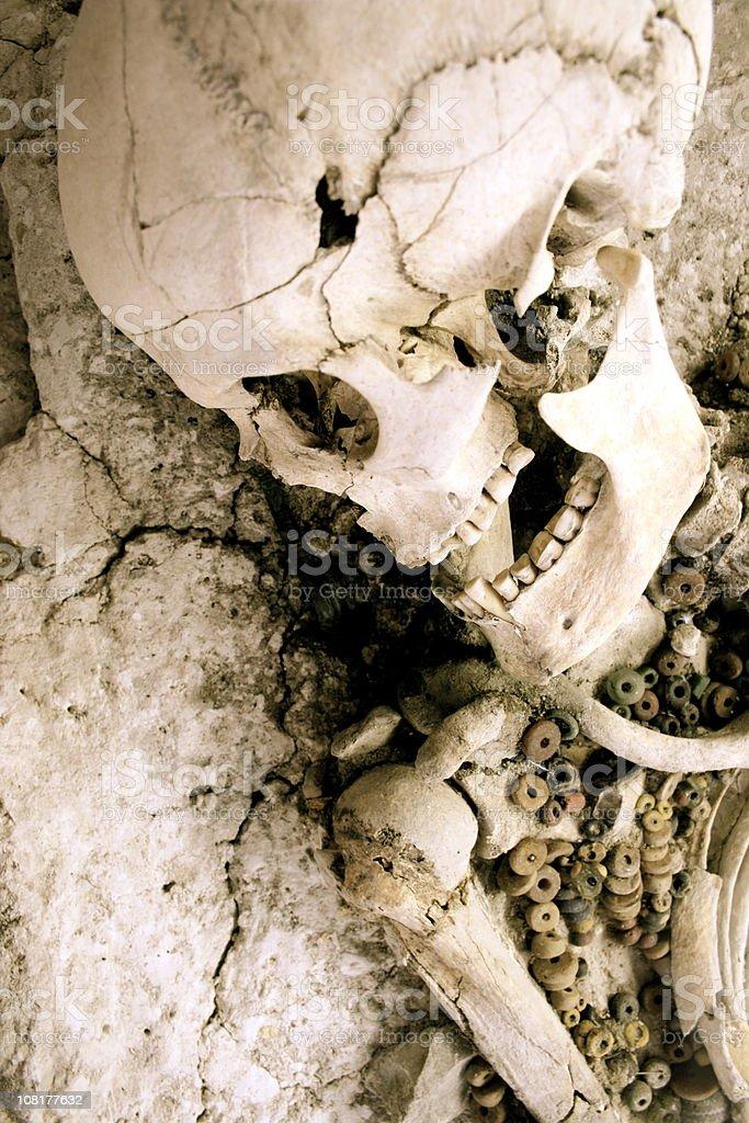 female skeleton in medieval grave royalty-free stock photo