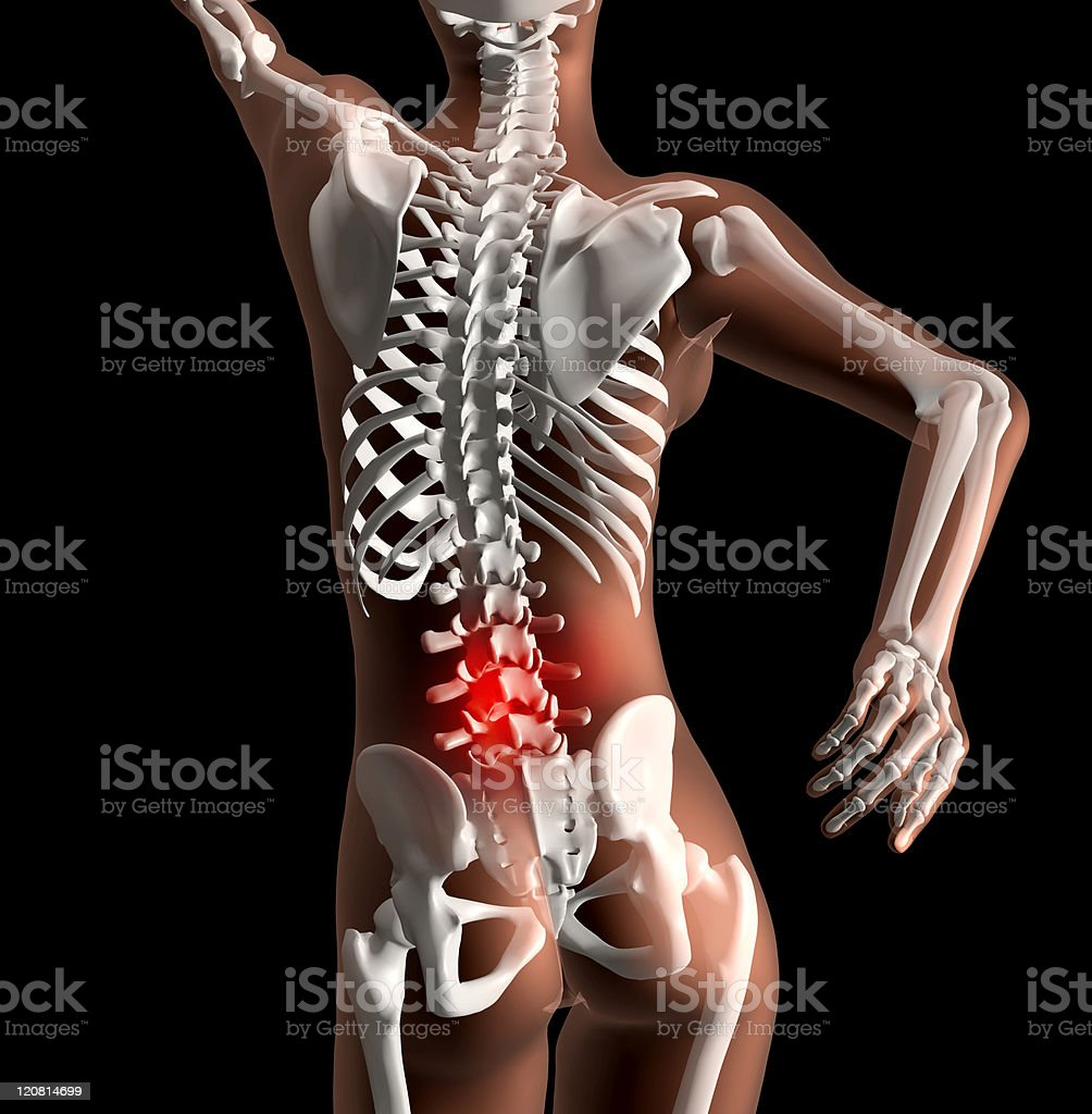 Female skeleton with backache stock photo
