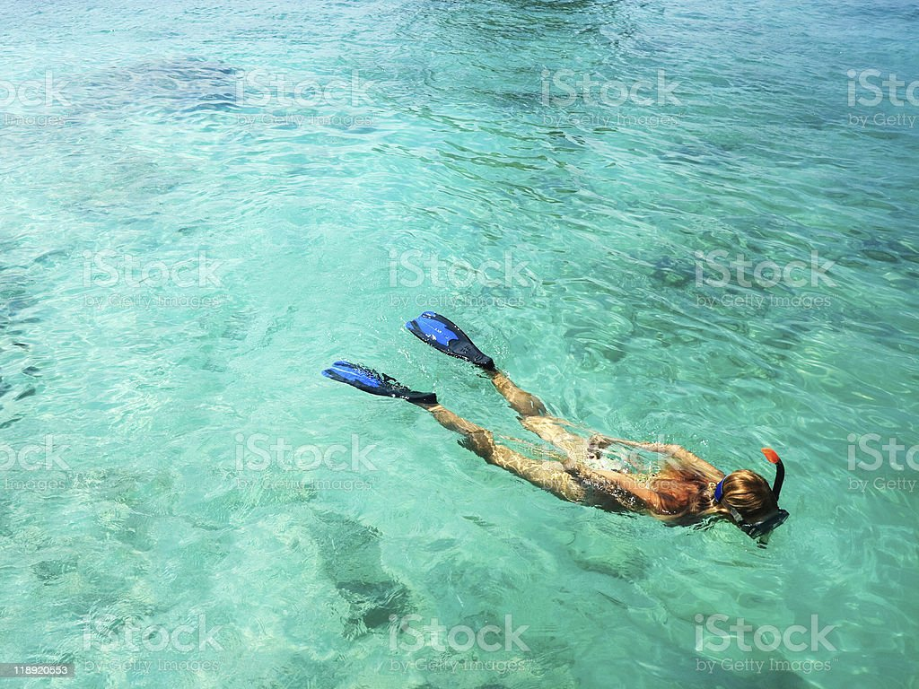 A female snorkeling in the blue water stock photo